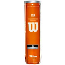 CAN OF 4 WILSON TOUR CLAY TENNIS BALLS