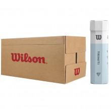 CASE OF 18 CANS OF 4 WILSON TRINITI BALLS