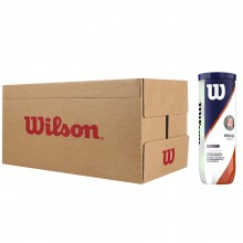 CASE OF 24 CANS OF 3 WILSON ROLAND GARROS OFFICIAL CLAY BALLS