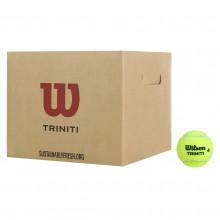 CASE OF 36 WILSON TRINITI CLUB BALLS