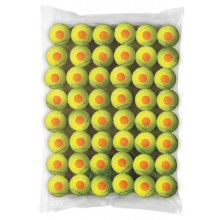 BAG OF 48 WILSON STARTER ORANGE BALLS